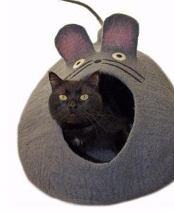 Dharma-dog-karma-kat-mouse-cat